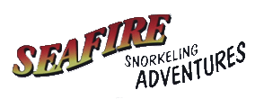 Seafire Snorkel
